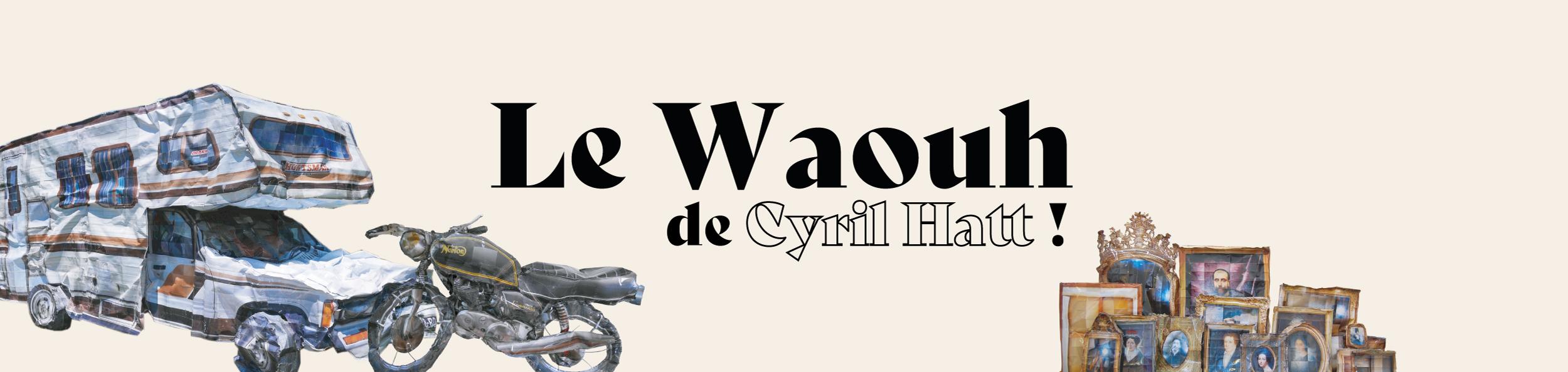 L'artiste Cyril Hatt expose ses œuvres aux Boutiques Saint Georges dès le 23 mars   !