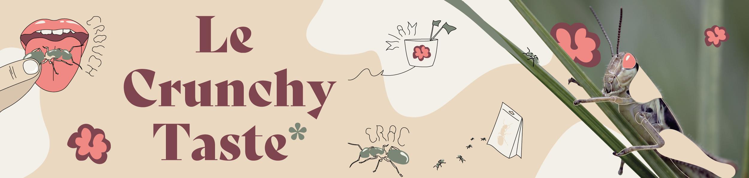 Le Crunchy Taste : Oserez-vous croquer des insectes ?